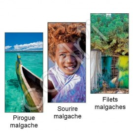 Marque-Page Magnétique Thème Madagascar