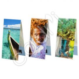 Marque-Page Magnétique - Thème Madagascar