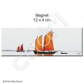 Magnet Sinagot Joli Vent en baie de Quiberon